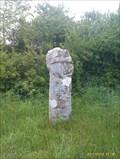 Image for Bosinney or Fenterleigh Cross, Tintagel