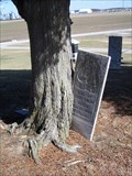 Image for Mary Jane Crapp's tombstone got eaten by a tree!