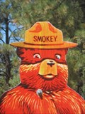 Image for Smokey Bear - SR 260, Overgaard, Arizona