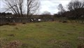 Image for Cropston Reservoir - Bradgate Park, Leicestershire, UK