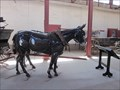 Image for Quartermaster's State Historic Park Horses - Yuma, AZ