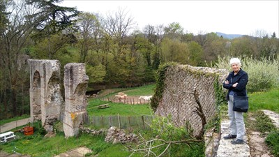 This shows the arch and the surface canal of the aqueduct
