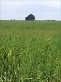 Image for 7 & 7 Barn - Erie, Colorado