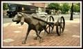 Image for Goatcart — Bellingham, WA