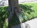 Image for Logan Avenue Fairy Door - Salt Lake City, UT