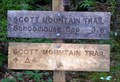 Image for Scott Mountain Trail at junction of Indian Grave Gap Trail and Crooked Arm Ridge Trail - Great Smoky Mountains National Park, TN