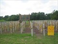 Image for Pirate Ship Rope Maze - Thierbach's Orchard - Marthasville, Missouri.