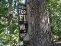Image for Menantico Pond Sign Devouring Tree - Millville, NJ