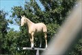 Image for Palomino on a Pole - Strafford, MO