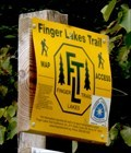 Image for Finger Lakes Trail - Potato Hill State Forest , Caroline, NY
