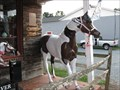 Image for Fiberglass Horse at the Hoof and Woof - Mint Hill, NC