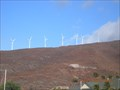 Image for Maui Windmills