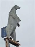 Image for Polar Bear - Spring, TX