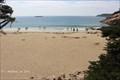 Image for Sand Beach, Arcadia National Park - Bar Harbor, ME