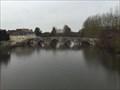 Image for Pont gothique de St Savin