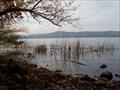 Image for Laacher Lake: Mofette