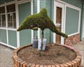 Image for Dolphin Topiary - Chemainus, British Columbia, Canada