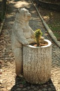 Image for The Bear in Gulhane Park - Istanbul, Turkey