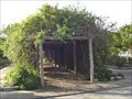 Image for Vine covered pergola at New Braunfels Conservation Society's Old Town - New Braunfels, TX