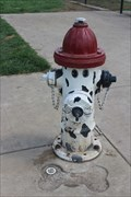 Image for Firehouse Dog Hydrant - Lewisville, TX