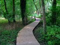 Image for Elevated Boardwalk #2 @ Barclay Farmstead Nature Trail - Cherry Hill, NJ