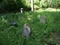 Image for židovský hrbitov / the Jewish cemetery, Stádlec,  Czech republic