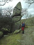 Image for Puckie Stone, Dewerstone, South West Dartmoor