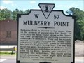 Image for Mulberry Point
