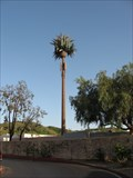 Image for Cosmos Cell Phone Tower - Las Flores, CA