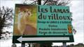 Image for Les lamas du Tilloux - Deux-Chaises - France