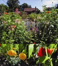 Image for Haddon Township Community Garden - Haddon Twp., NJ