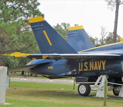 F/A-18 Hornet (Blue Angels) - NAS.