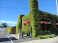 Image for Thai rrific - San Luis Obispo, CA