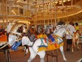 Image for The Riverview Carousel