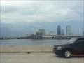 Image for Fuller Warren Bridge - Jacksonville, FL