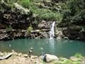 Image for Waimea Falls - Oahu, HI