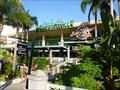 Image for Margaritaville - Dance Club - Orlando, Florida, USA.