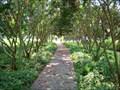 Image for St. John's County Arboretum - St. Augustine, Florida
