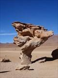 Image for Árbol de Piedra - Bolivia