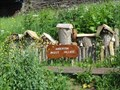 Image for Insect Village - Anderton, UK
