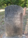 Image for Estha Hawkins - Andrews Cemetery, Greenwood County, SC