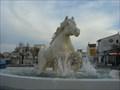 Image for White horse, Saintes-Maries-de-la-Mer, Gard, France