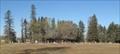 Image for St. John's Lutheran Church Cemetery - Wetaskiwin, Alberta
