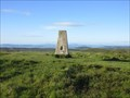 Image for O.S. Triangulation Pillar - Westerkeith Hill, Angus.