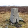 Image for O.S. Triangulation Pillar - Hill of Glansie, Angus.
