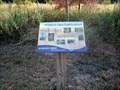 Image for HABITAT: Open Field/Grassland - Boundary Creek Natural Resource Area - Moorestown, NJ