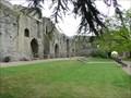 Image for Newark Castle