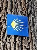 Image for Waymarker in der Nähe der Waldkapelle - Mayen, RP, Germany