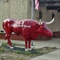 Image for Red Longhorn - Plainview, TX