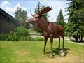 Image for Jerry the Moose - Clearwater, British Columbia